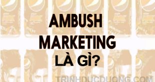 Ambush Marketing là gì