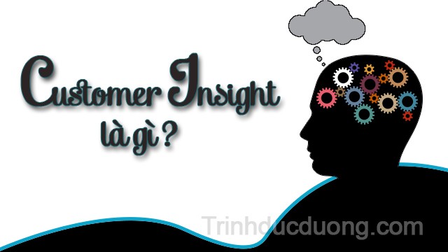 Customer Insight là gì