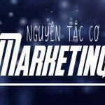 Nguyên tắc cơ bản của Marketing – Nguyên tắc tiếp thị thị trường trong tay