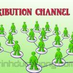 Distribution channel là gì? Các loại Distribution channel phổ biến